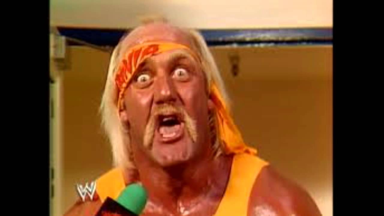 Young hulk hogan pictures-6739