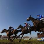 william hill horseracing horses racing