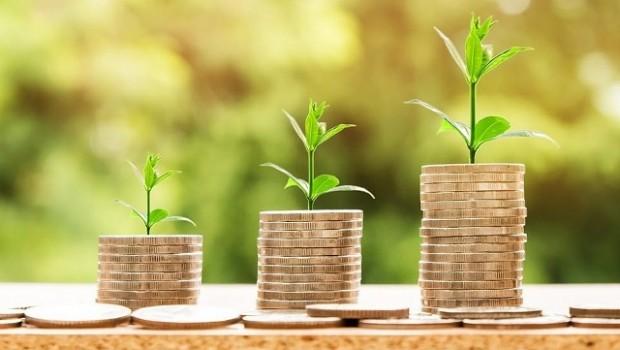inversion monedas dinero brotes