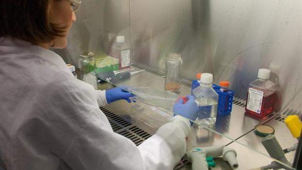 ep investigacion sanidad ensayo clinico laboratorio