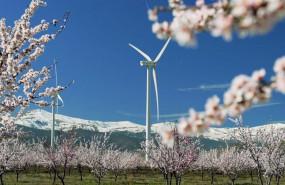 ep iberdrola inicia la construccion de un conjunto eolico de 79 mw entre malaga y sevilla
