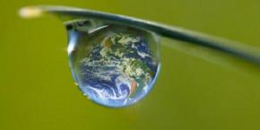 ecologie 20211025180820