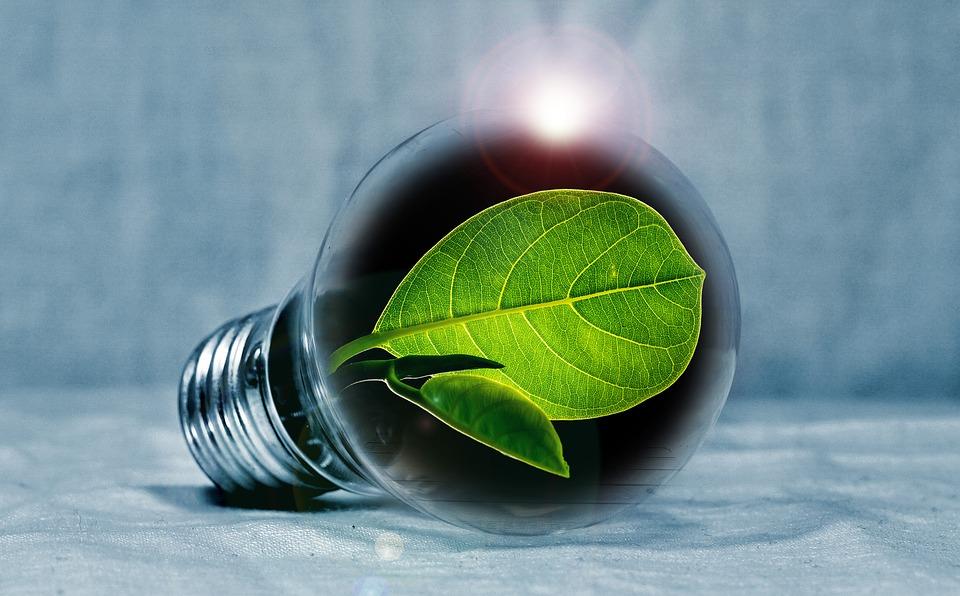 energia renovables verde