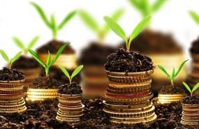 dinero, inversión, euro